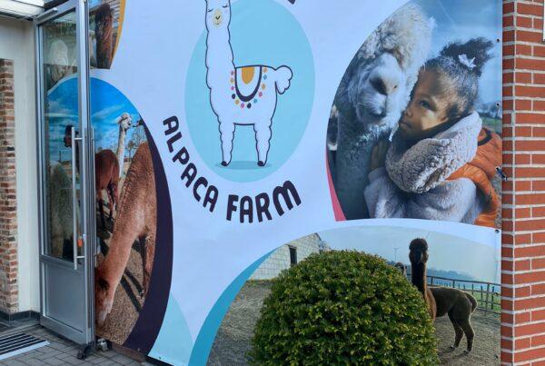 groot formaat spandoek epic alpaca farm